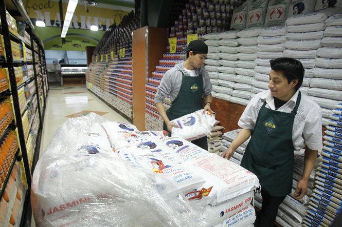 blatte-magazzini-supermercati
