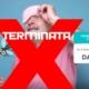 Promo-Disinfestazione-Zanzare-TERMINATA-3